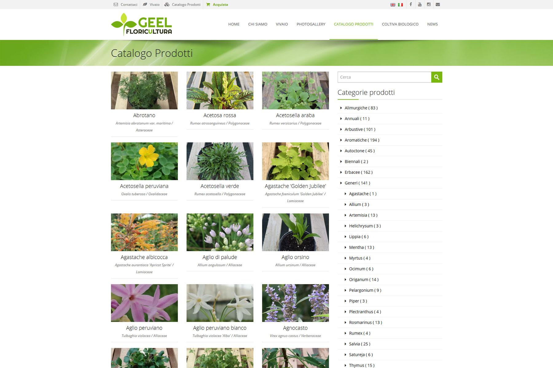 xplay-agenzia-web-sito-geel-floricoltura-carceri-padova